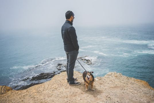 dog friendly guide to Mendocino