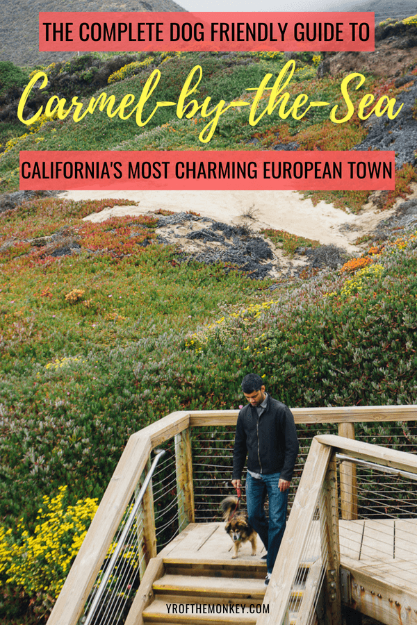 Looking for the perfect Northern California (USA) getaway with your dog? Then read this ultimate dog friendly Carmel guide packed with the best attractions, beaches and restaurants in the most charming European seaside town in California. Pin this to your California or USA board now! #carmelbythesea #dogfriendlyguide #dogfriendlytravel #california #USA #travelwithdogs #petfriendly #travelwithpets #californiabeaches