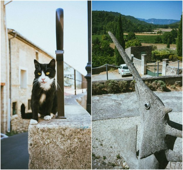 The quiet and serene Ansouis is one of those blink-and-you'll miss darling villages of Provence in the Luberon Valley
