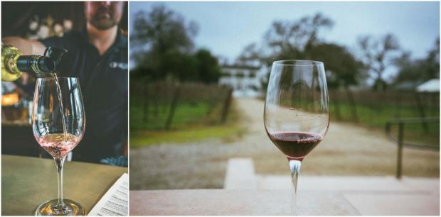 Best lodi wineries dog friendly wine tasting lodi California