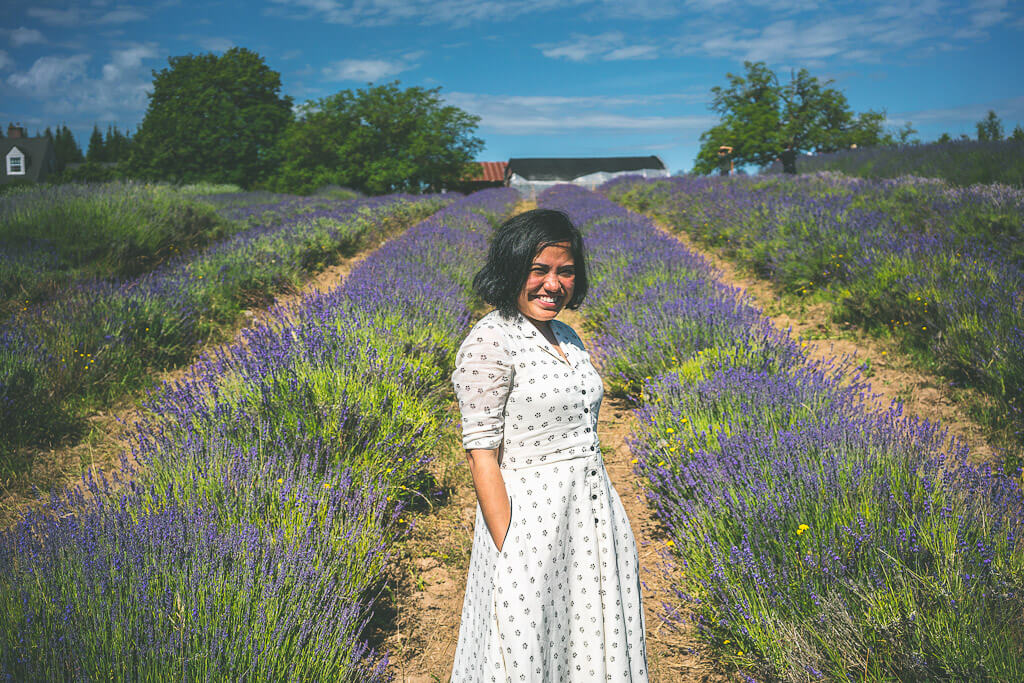 Mountainside Lavender farm in Hillsboro, Oregon is one of the most beautiful lavender fields in USA