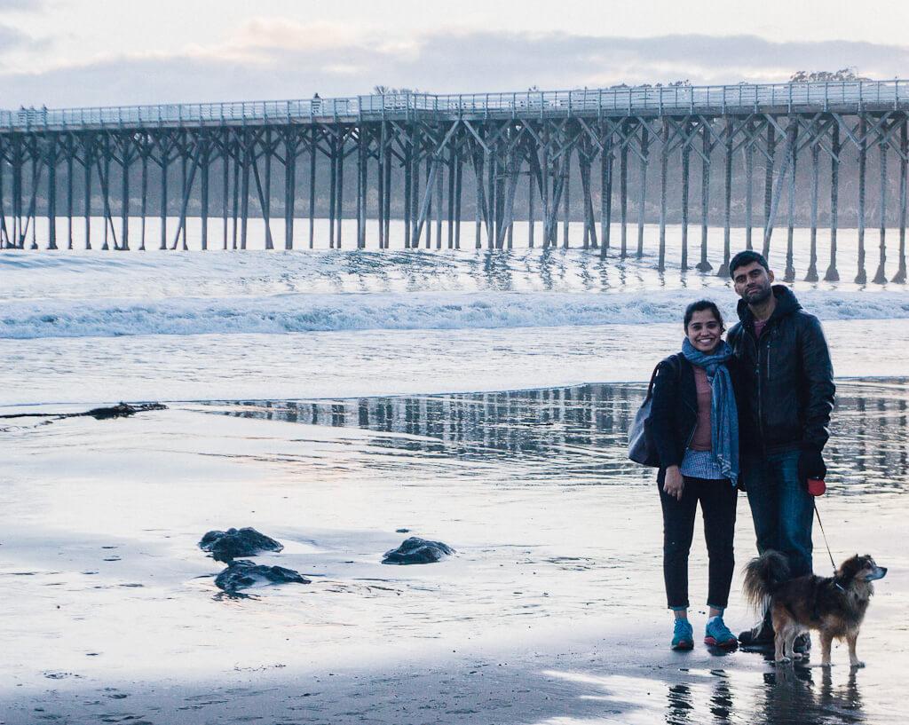 Dog friendly beach, San Simeon cove, central coast of California