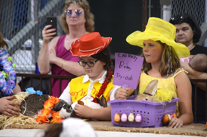 Scenes from the Greene County Fair — Rabbit costume contest