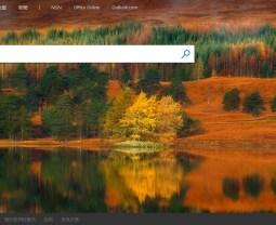 搜尋器二哥也很重要!你知道新版 Bing Webmaster Tools 有何功能嗎?