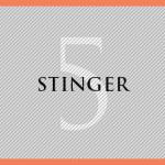 Stinger5カスタマイズ|やりたいこと一覧