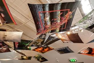BornholmArtmuseum-15