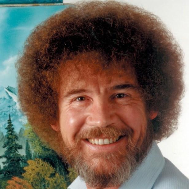 Image result for bob ross