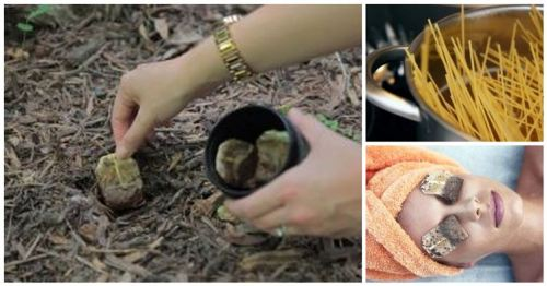 what to do with old tea bags