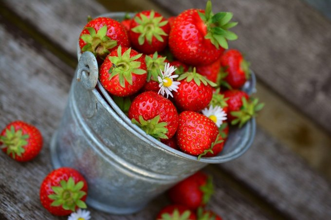 strawberry bucket - more than enough for a yummy strawberry smoothie