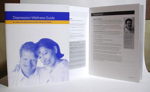 Depression Wellness Guide