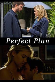 Perfect Plan (2010)