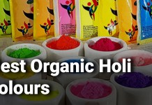 Best Organic Holi Colours