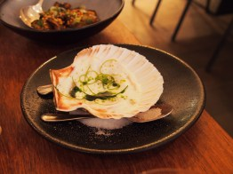 Isle of Mull scallop, buttermilk, lime