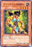 303-006 アマゾネスの格闘戦士