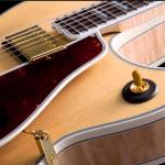 アーチトップギター ボディの嫌な共振の原因は?