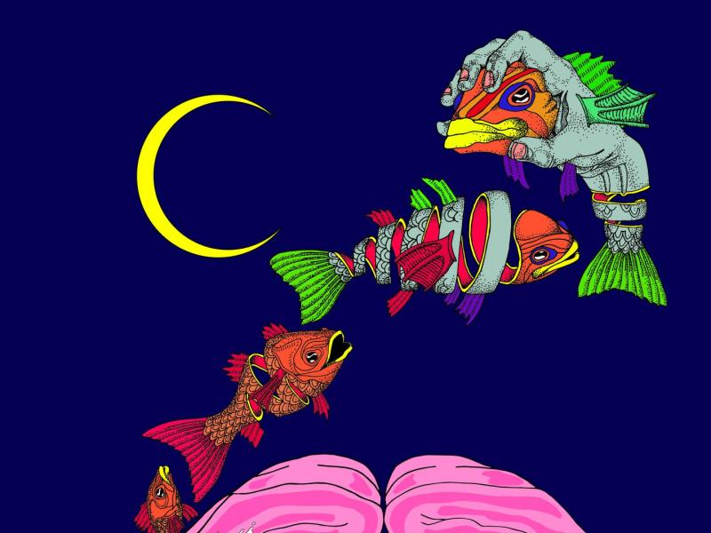 This illustration represents the overfitted brain hypothesis of dreaming, which claims that the sparse and hallucinatory quality of dreams is not a bug, but a feature, since it helps prevent the brain from overfitting to its biased daily sources of learning