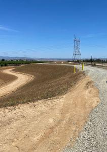 Yuba Goldfields levee