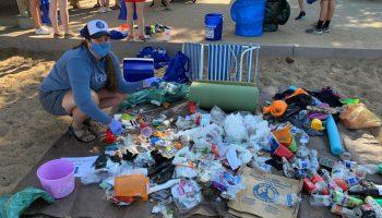 Compiling litter statistics