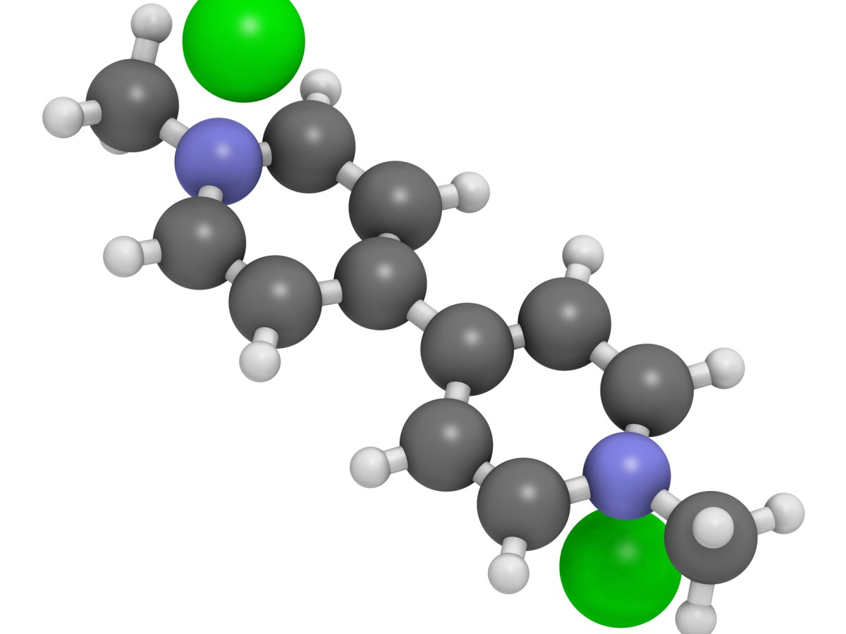 Paraquat molecule