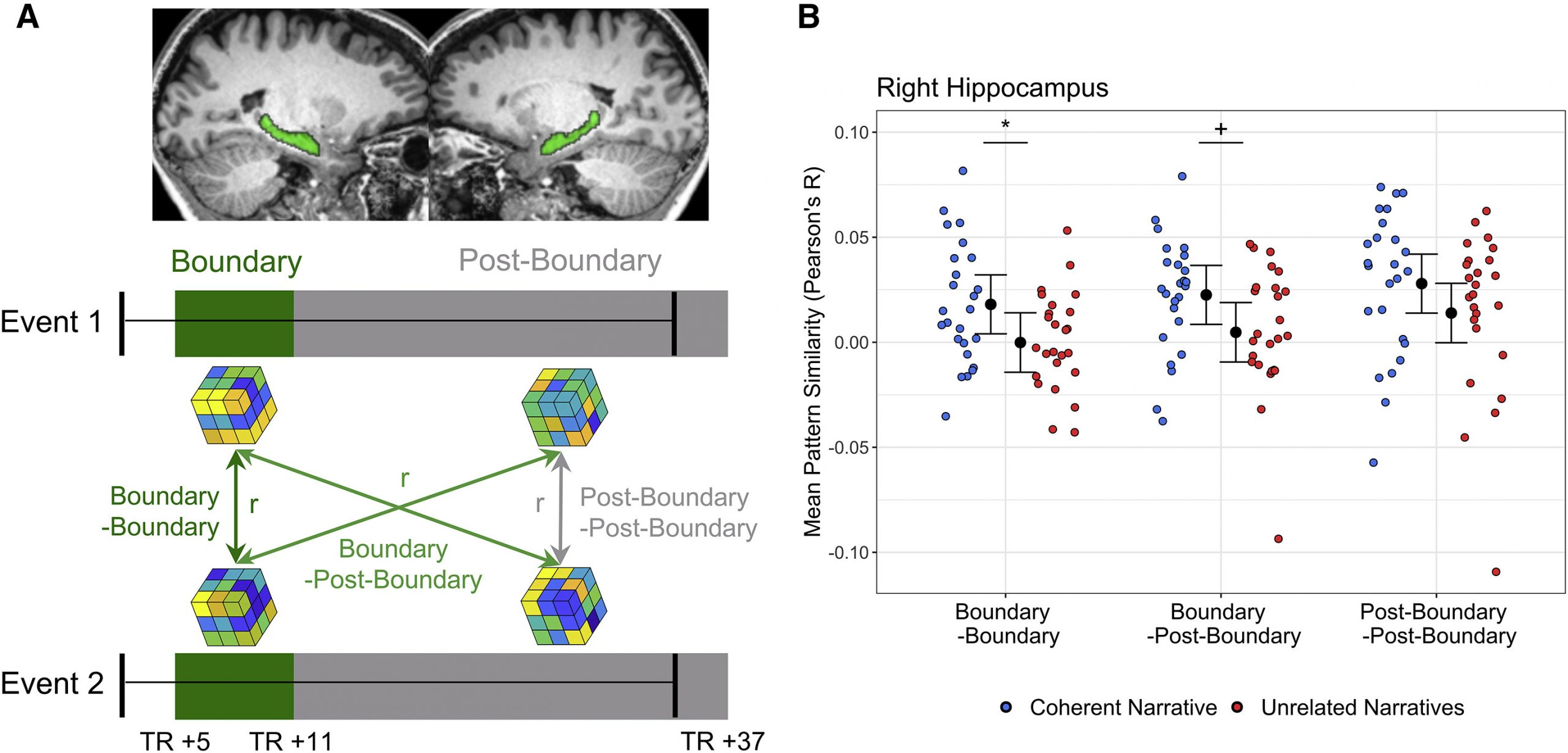 Right hippocampal activity patterns bridge events that form a coherent narrative