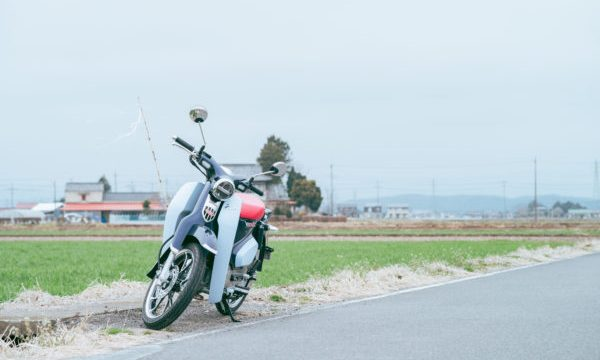 スーパーカブC125と田んぼ