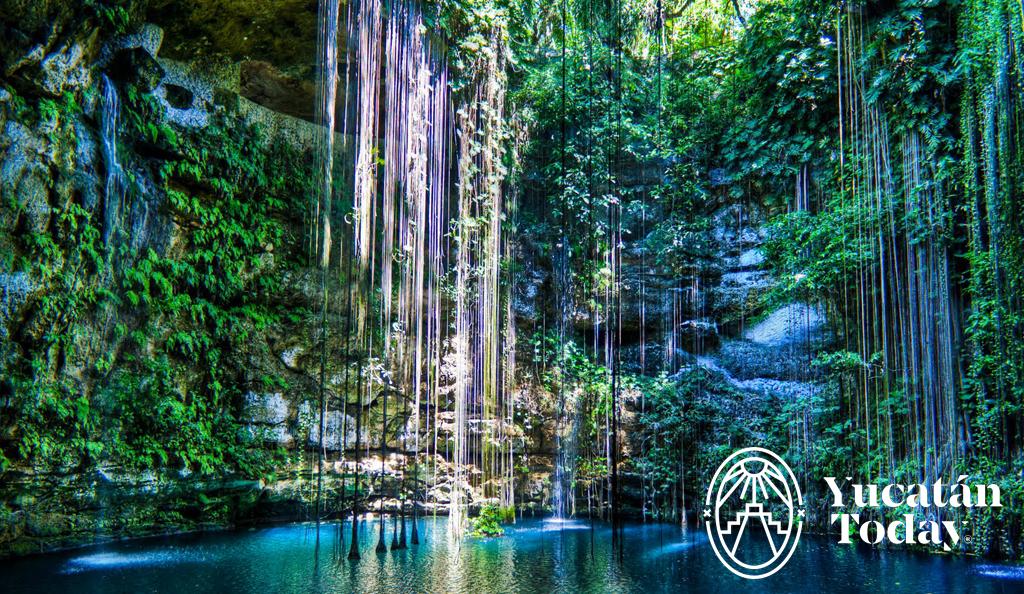 Cenotes en Yucatán