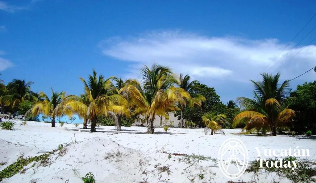 Bienes Raíces – Casas de Playa