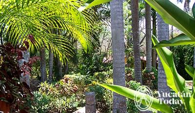Hacienda Chichen visita4