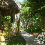 Eco-House in Mérida: The Real Thing