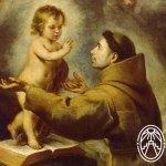 Celebrating Saint Anthony of Padua