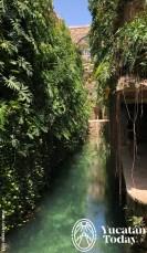 Hacienda-Mucuyche-cenotes