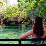 El Corchito, un paraíso escondido en el manglar de Progreso