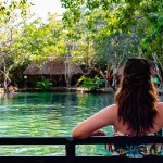 El Corchito, a hidden paradise in the Progreso mangroves