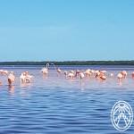 El Futuro del Turismo en Yucatán