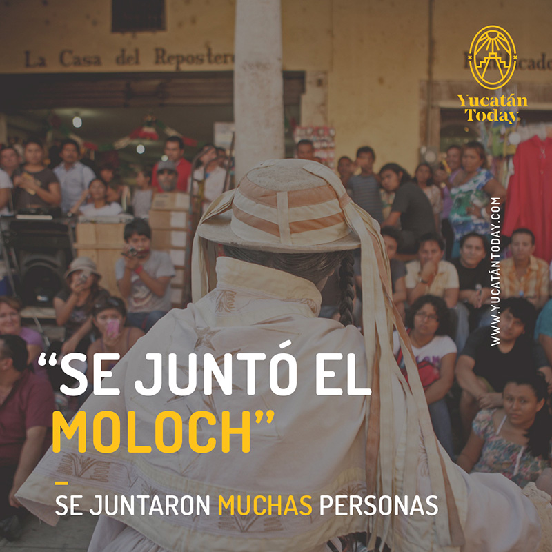 """Learn how to """"Speak Yucatecan"""" - Yucatan Today"""