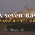 A Seven Day Stay – February 2021
