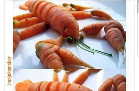 Vegans be like - OMG vegan lobster, I can't tell the difference