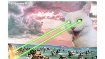 Killer Cat Meme on That Coronavirus Madness