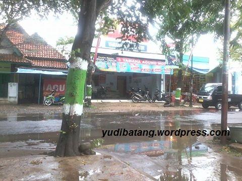 yam batang