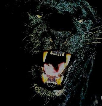 dihadang hantu harimau