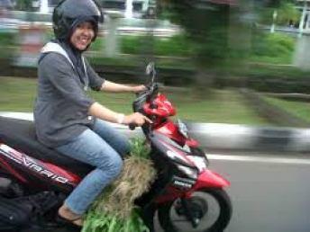 Ibu-ibu naik motor bebek