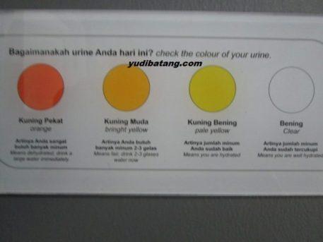 warna air seni urine