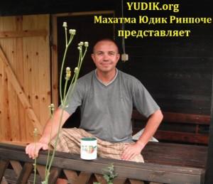 YDIK-org-998