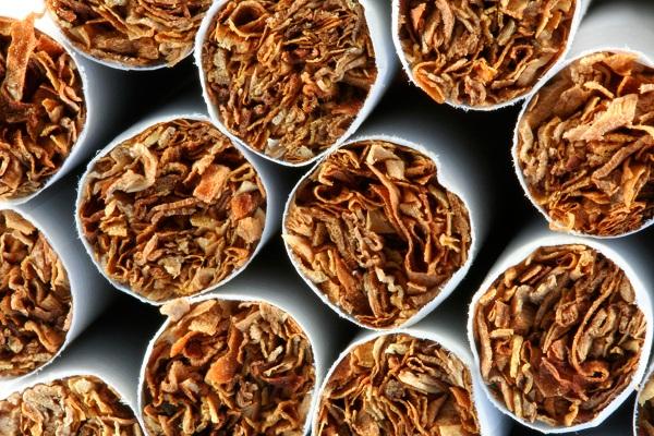 Донской табак
