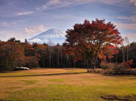 Yuga Kurita Mount Fuji Yachonomori Saiko_SDI1035