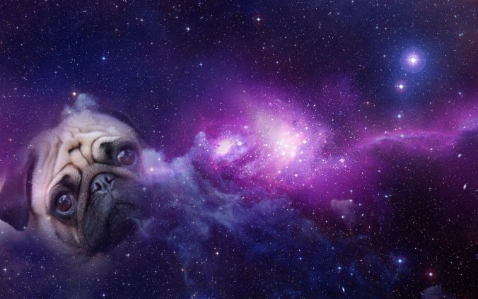 pug_galaxy__wallpaper_by_skywarita-d82krz9