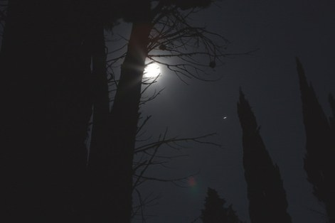 darkwordl