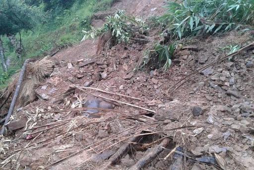 तनहुँको भानु नगरपालिका–९ सिमलगैह्रामा सोमबार पहिरोले घर पुरिँदा हजुरआमा र नातिनीको मृत्यु