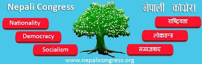 कांग्रेस संस्थापन इतर जिल्ला सभापतिको भेलाका ९ निर्णय : विभाग गठन अमान्य