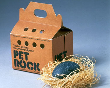 Pet Rock Gamification